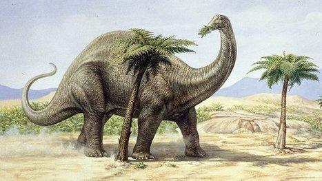Dinosaur gases 'warmed the Earth' | Gavagai | Scoop.it