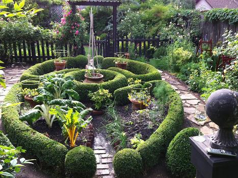 p o t a g e r: Foxglove and Signature Plants   Annie Haven   Haven Brand   Scoop.it