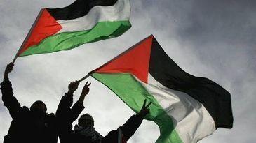 Los franceses defienden una Palestina independiente - Hispan TV | TFG | Scoop.it