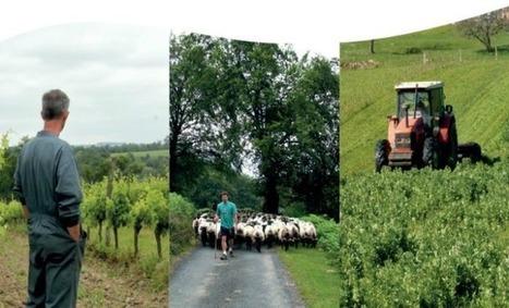 « Sur la Route de la Bio », ou comment inciter les agriculteurs à se convertir au bio | Agriculture en Dordogne | Scoop.it