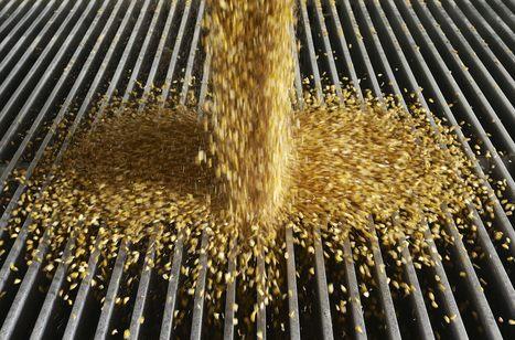 EPA Requires More Ethanol Into Less Gasoline - Breitbart | Additifs | Scoop.it