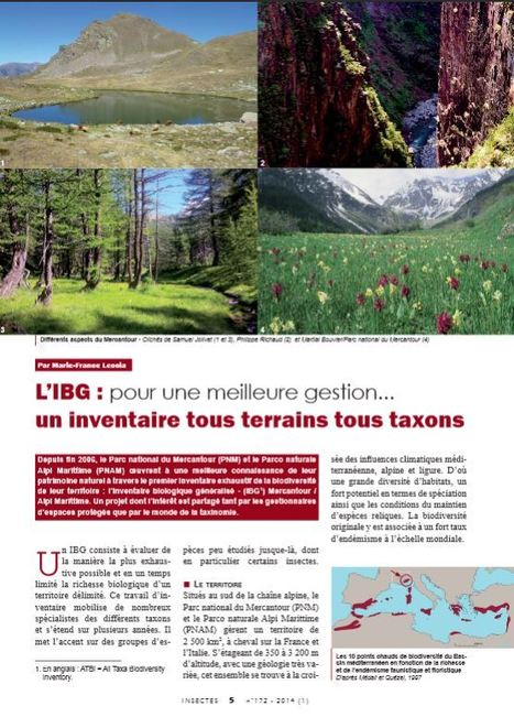 En ligne et en pdf : les articles du n° 172 d'Insectes (1er trimestre 2014) | Insect Archive | Scoop.it