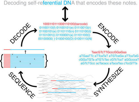 Scientists Convert a 53,000-Word Book Into DNA | Weird Science | Scoop.it
