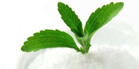 Stevia:  The Sweet Medicine for Inflammation | Radiant Health | Scoop.it