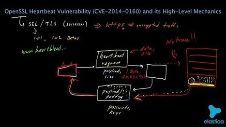 Q. and A. on Heartbleed: A Flaw Missed by the Masses | Fraud Intelligence & Risk | Scoop.it