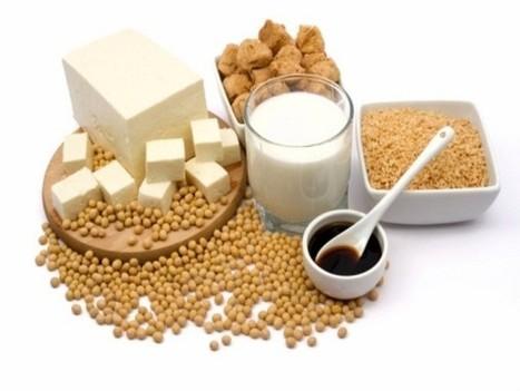 Kinh nghiệm khi sử dụng máy làm sữa đậu nành Soylove | MegaHOME.vn | Modulequang SFP | Scoop.it