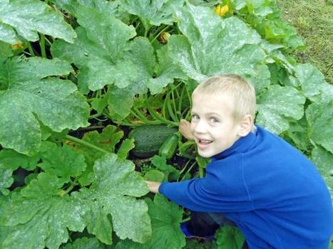 Growing Global Learning through plants, food and gardening: teacher training at Eden Project   Gardening   Scoop.it