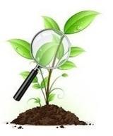 Participez à l'Observatoire des start-up 2015 !   Economie verte   Scoop.it