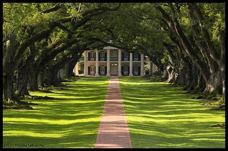 Trip to New Orleans - May 2012 | Oak Alley Plantation: Things to see! | Scoop.it