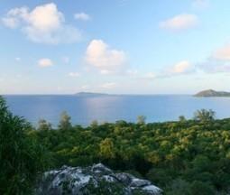 Cousin Island ☺ Couleurs d'Aurore | My topics | Scoop.it