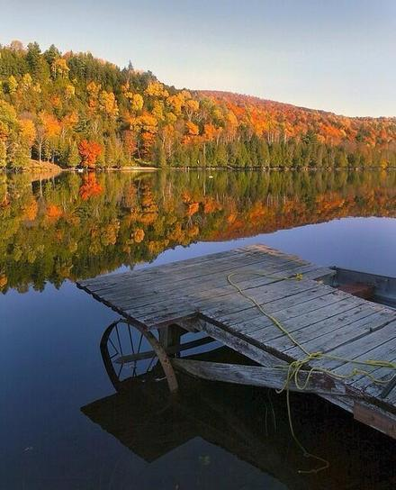 Twitter / Alexistrends99: Vermont Fall Foliage! #vermont ... | Fall Perennials | Scoop.it