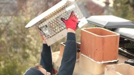 Finding the right chimney cleaning Fairfax VA service | Rooftopchimneysweeps | Scoop.it