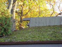 Moss Acres - Green Roof Moss | Eco-friendly roofs:  green, white, and garden | Scoop.it