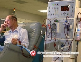 How to Help Patients with Creatinine 7.9 Avoid Dialysis | kidney fight | Scoop.it