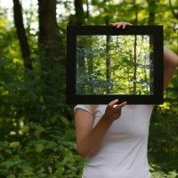 Il fotovoltaico trasparente | ENERGY&FOOD | Scoop.it