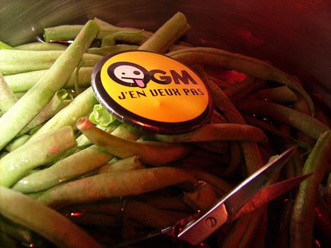 Le Gouvernement veut transposer en force la directive européenne sur les OGM | CAP21 Le Mouvement | Scoop.it