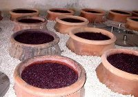 Spanish natural wines | Wine in the World | Scoop.it