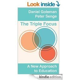 The Triple Focus: An approach to education and to sustainable organising « Tonnie van der Zouwen   Stakeholder involvement for change and innovation   Scoop.it