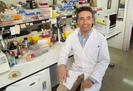 La vacuna de la tuberculosis se probará en humanos este año   Science   Scoop.it