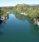 Pollution des eaux - Un néonicotinoïde de plus en plus présent dans les cours d'eau | Toxique, soyons vigilant ! | Scoop.it