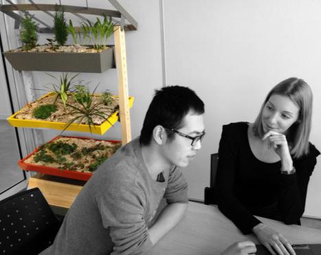 Up & Green, un mini jardin bio et très local dans son salon?   ON-ZeGreen   Scoop.it