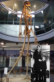 Le meilleur de l'actualité: Ancienne civilisation : Le squelette d'un géant de plus de 5m (!) exhumé #science #histoire   Toute l'actus   Scoop.it