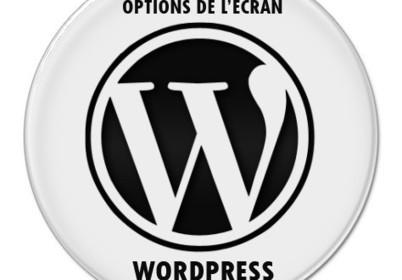 Votre blog WordPress vous cache des choses | Wordpress, SEM et Webmarketing | Scoop.it