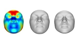 Face-To-Face: Crude Mugshots built from DNA data alone | Amazing Science | Scoop.it