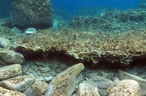 Small 'Underwater Pompeii' Found Off Greek Island : DNews | AncientHistory@CHHS 2012-13 | Scoop.it