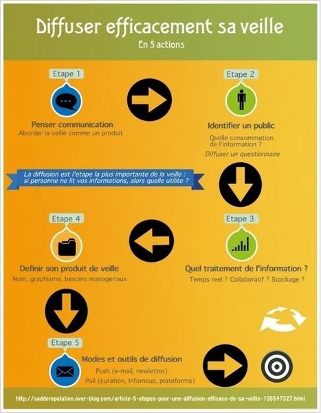 Infographie : comment diffuser les résultats de sa veille ? | virtual multicultural interaction | Scoop.it