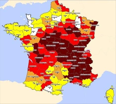 Cartographie de l'ambroisie en 2014   Variétés entomologiques   Scoop.it