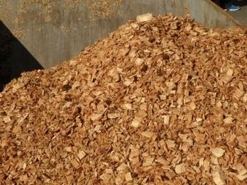 Biomasa - Lupa sobre la biomasa que sale de Menorca hacia Italia - Energías Renovables, el periodismo de las energías limpias. | Biomasa, tecnología sostenible para un futuro duradero! | Scoop.it