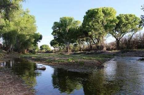 U.S., Mexico take stock of shared water | CALS in the News | Scoop.it