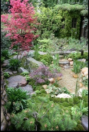 Trees, Plants and Shrubs For Making A Japanese Garden | Japanese Gardens | Scoop.it