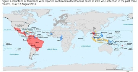 Avian Flu Diary: ECDC: Epidemiological Update On The Zika Virus & Complications Linked To Infection | Tools and tips for scientific tinkers and tailors | Scoop.it