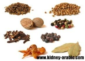 علاج الأمراض الكلية - أي نوع من مرضي الكلي يناسب علاج في الطب الصيني   أمراض الكلية في السعودية   Scoop.it