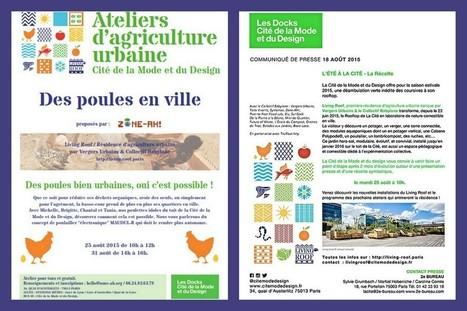 LivingRoof : Atelier Poules en ville x Première récolte — ZONE-AH! | Agriculture citadine | Scoop.it