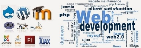 Finding the Best Website Development Company in Mississauga | Web Design and Development Services | Scoop.it