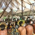 Indigenous Peoples Reject the Green Economy and REDD at Rio +20 | Postcolonial mind | Scoop.it