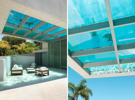 wiel arets architects build the jellyfish house around a floating pool | creativity & technology | Scoop.it