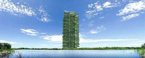 Il primo grattacielo green dello Sri Lanka - Casa & Clima | Gli alberi nei giardini | Scoop.it