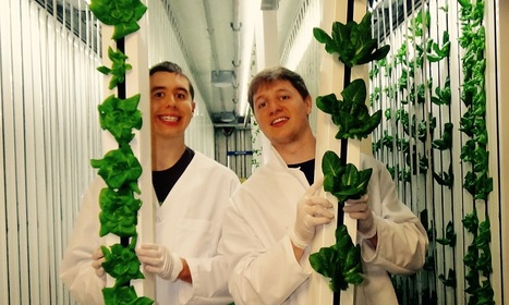 Zeponic Farms Grows Food and Opportunities for Special Needs Community | Vertical Farm - Food Factory | Scoop.it
