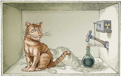 Captan el experimento del gato de Schrödinger en átomos reales | Educacion, ecologia y TIC | Scoop.it