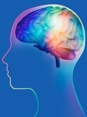 » Breaking Down Brain's Workings in Complex Attention Tasks - Psych Central News | Cognitive Psychology. Cognitive and behavioural Neuroscience | Scoop.it