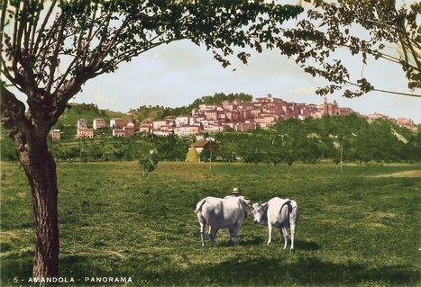 Amandola - history   Hideaway Le Marche   Scoop.it