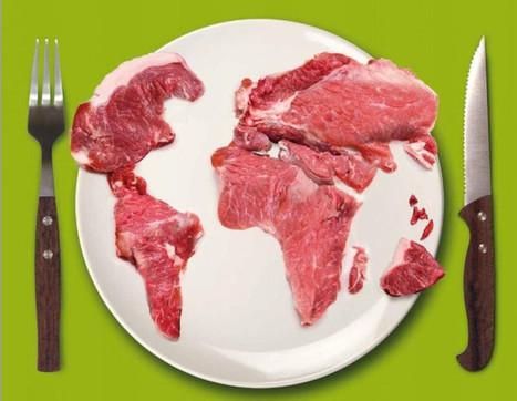 Viande : une facture trop salée pour l'environnement | Questions de développement ... | Scoop.it
