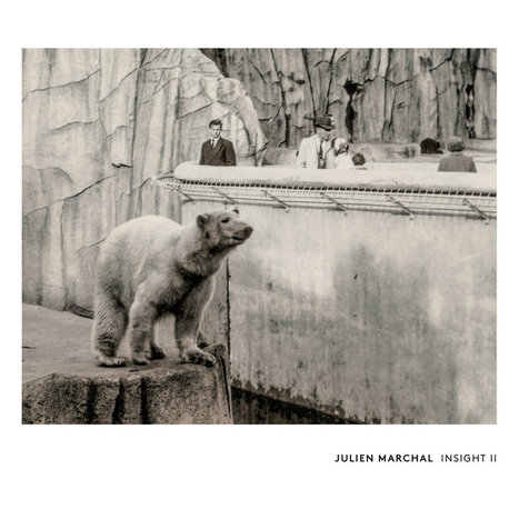 ALBUM. Julien Marchal - Insight II — | Musical Freedom | Scoop.it
