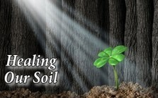 4 Ways to Heal and Replenish our Damaged Soil and Food Supply | Garden Spot | Scoop.it
