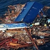 """A """"research cruise"""" could recruit tourists to study tsunami debris   Ocean Conservation   Scoop.it"""