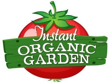 Instant Organic Garden: Tomato Tips - Bay Net | garden farm | Scoop.it
